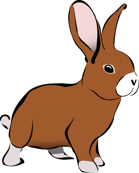 Rabbit panda free images. Bunny clipart graphic download