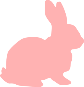 vector rabbit