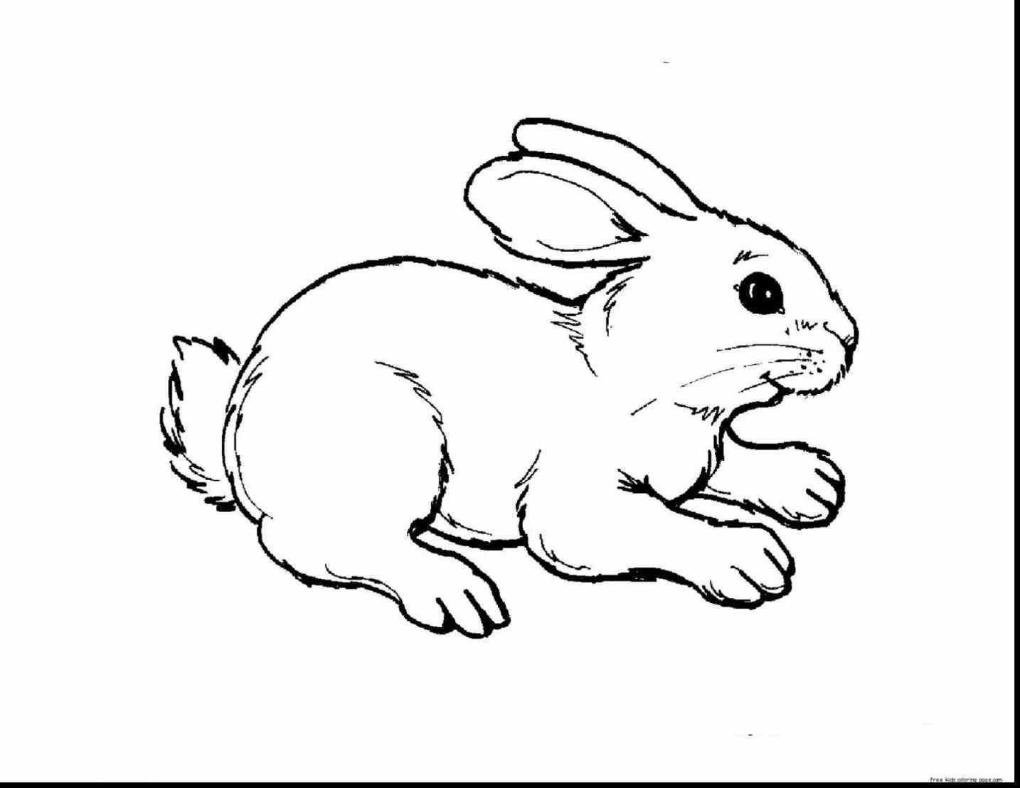 Bunny clipart black and white. Rabbit drawing also bunnies