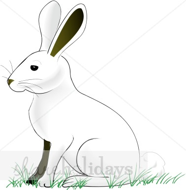 Bunny clipart hare. Easter rabbit