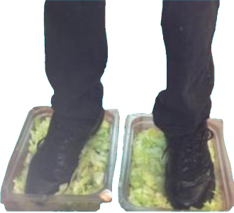 v ps real. Burger king foot lettuce png png black and white stock