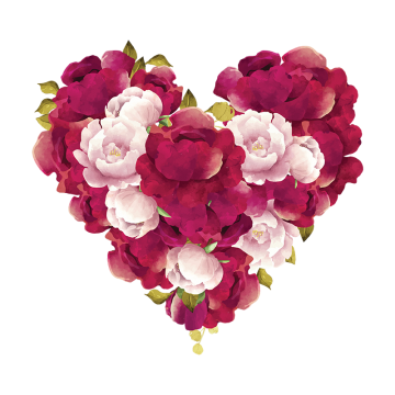 Burgundy flower png. Images vectors and psd