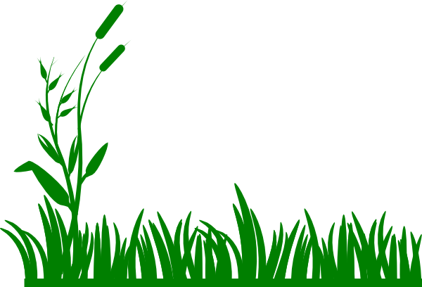 Bushes clipart square. Grass clip art at