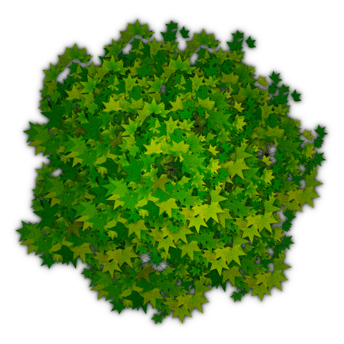 Bushes plan view png. Top tree transparent pictures