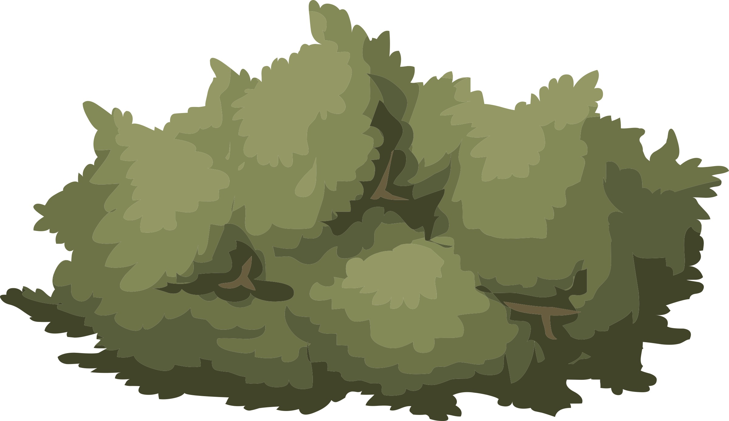 Bushes vector png. Alpine landscape mountain flora