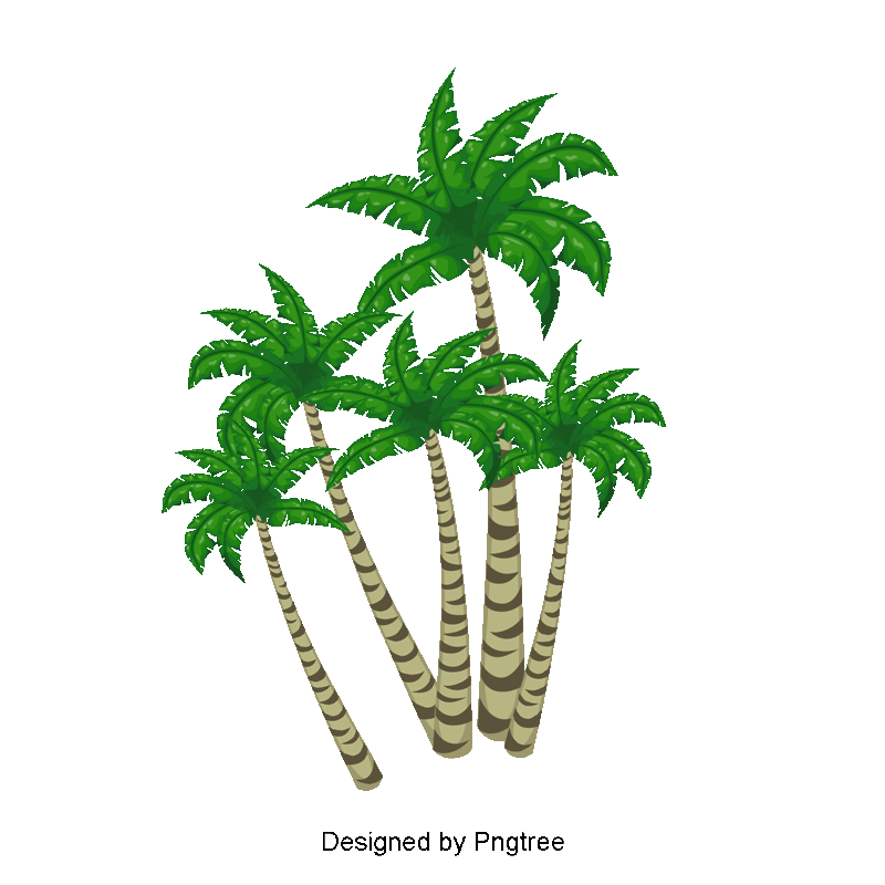 Coconut tree vector png. Material green plants clipart