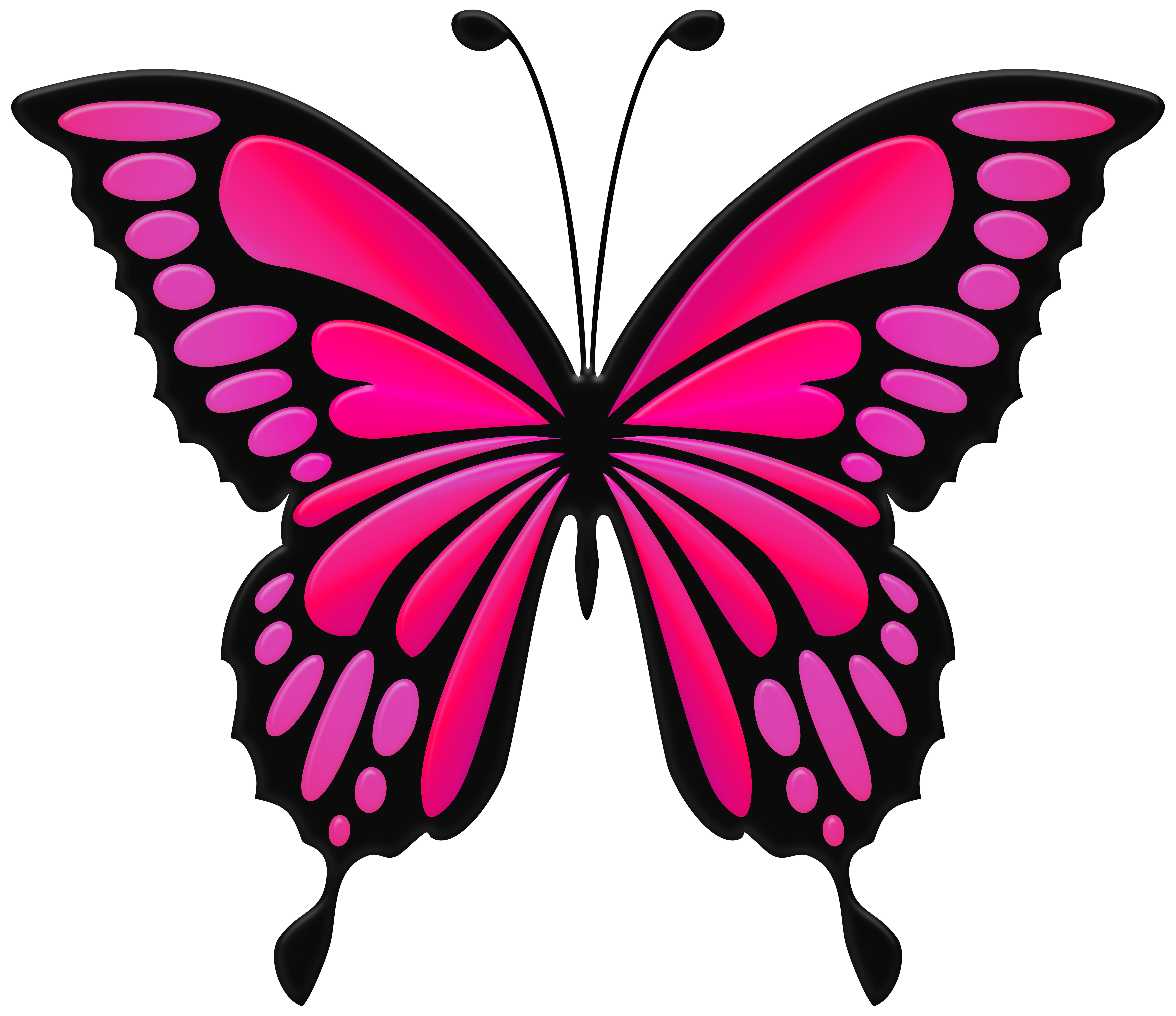 Pink butterfly png. Clip art image gallery