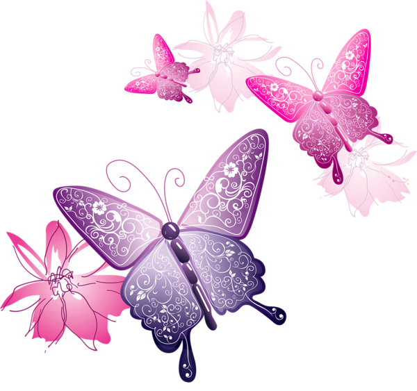 Butterflies pink png. Pin by terri on