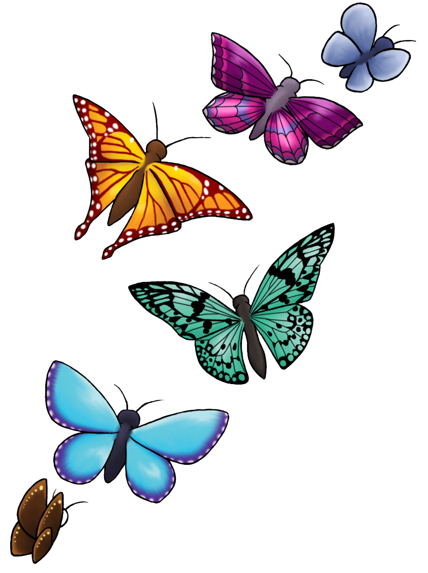Png butterflies. Butterfly hd transparent images
