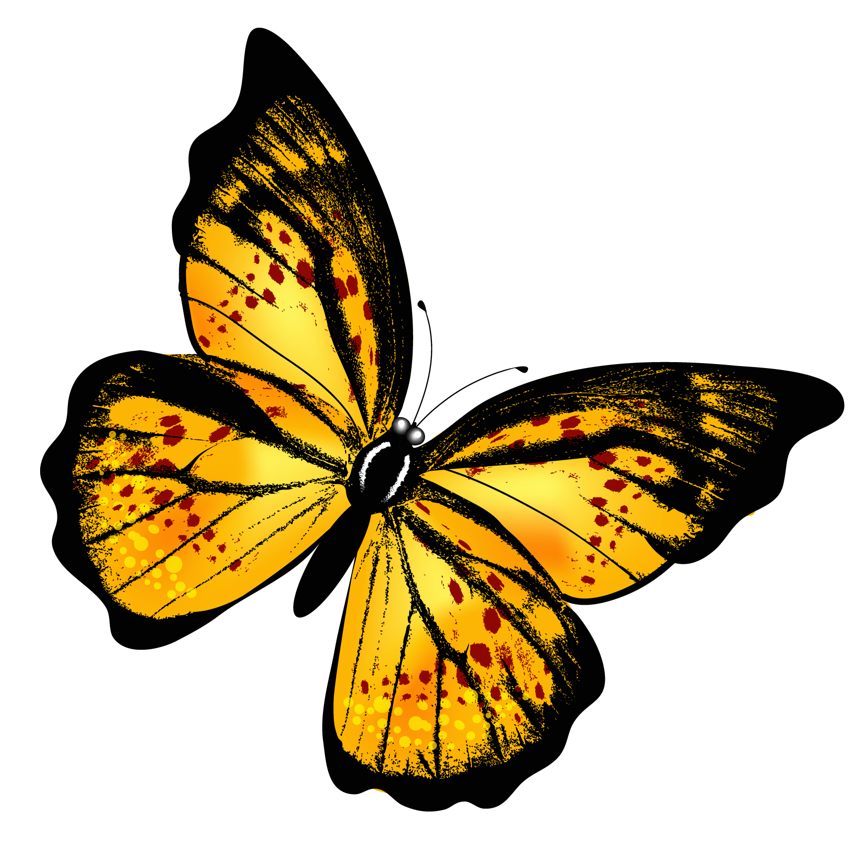 Transparent butterfly png. Yellow clipart picture butterflies