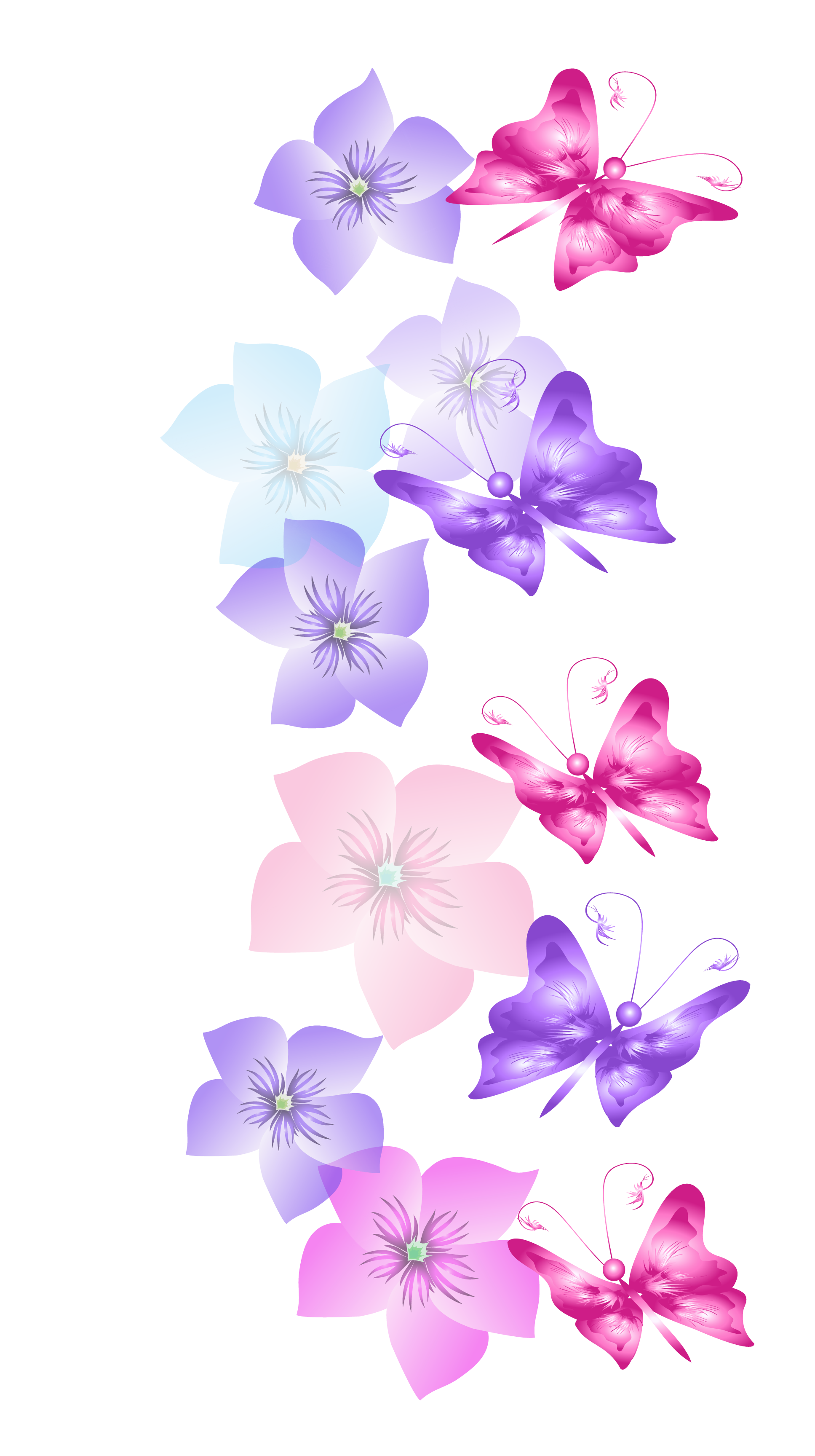 Outline vector lavender. Butterflies and flowers decoration
