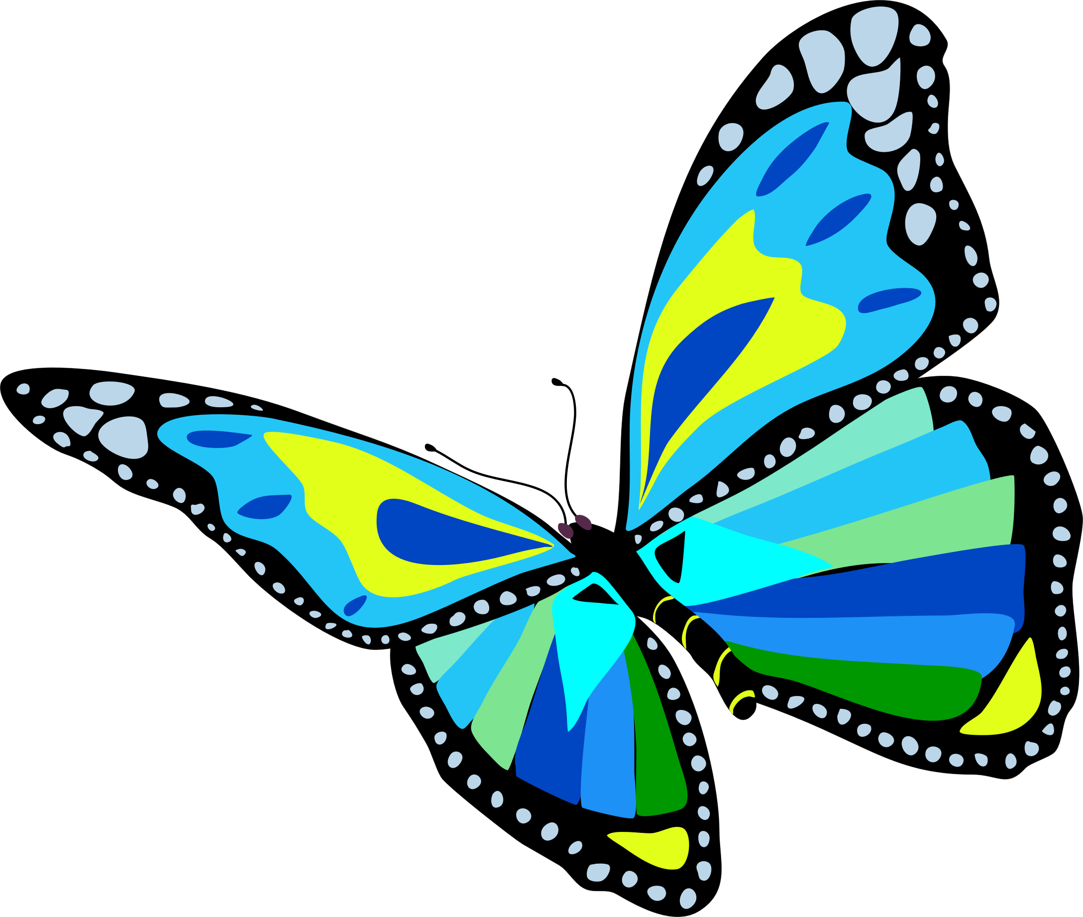 Butterfly clip art. Pioneering big pictures of