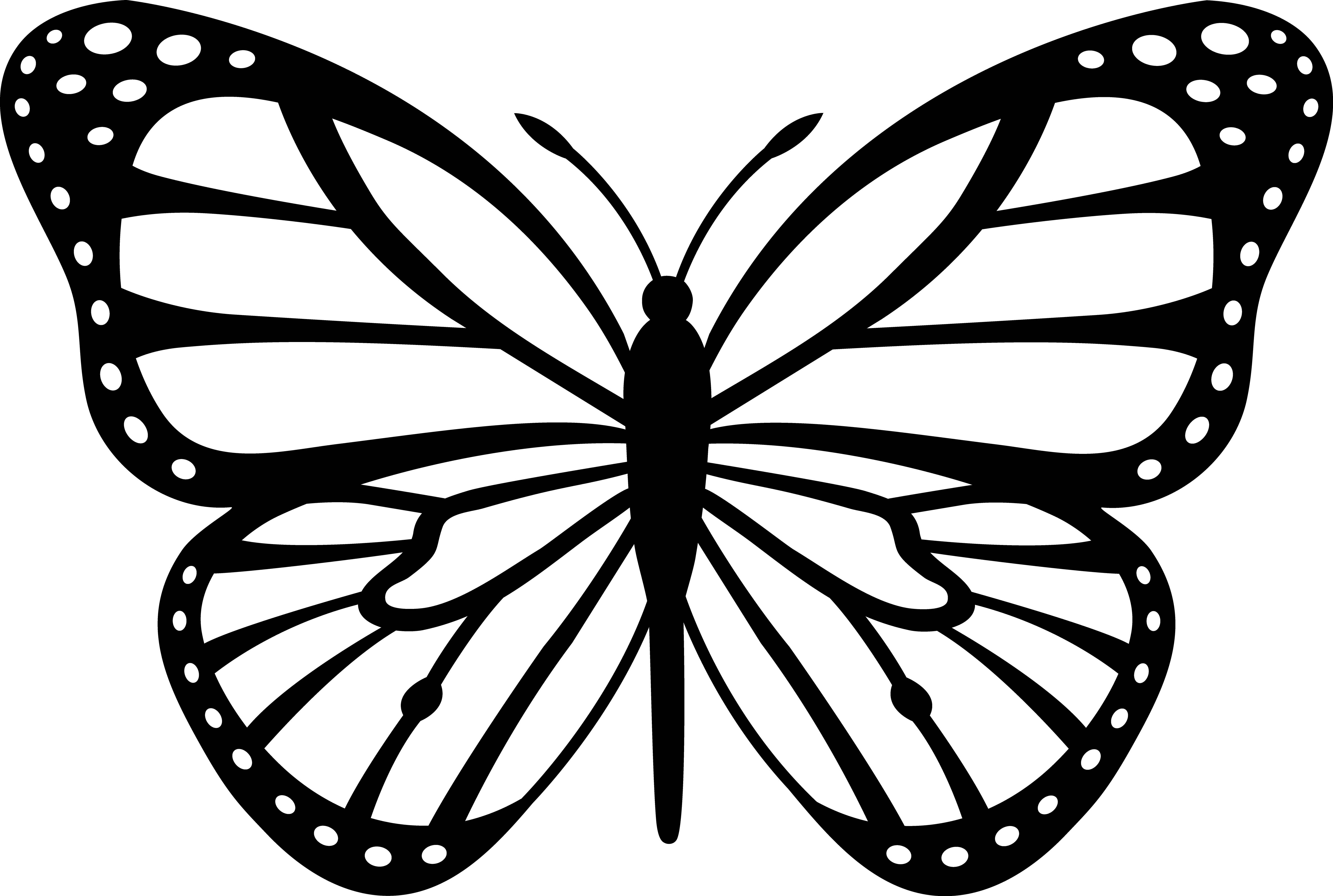 butterfly clip art butterfly outline