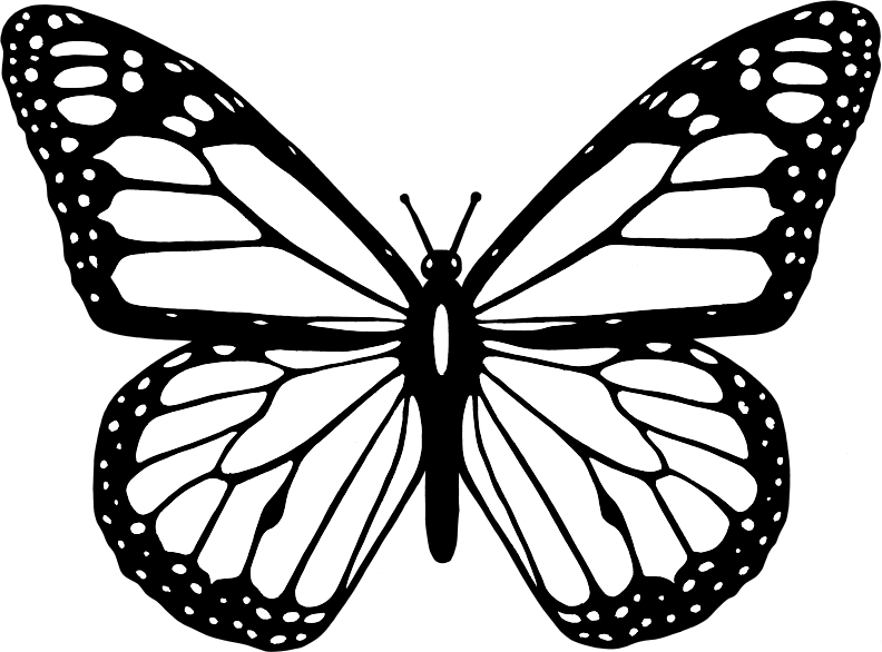 Butterfly clip art. Clipart black and white
