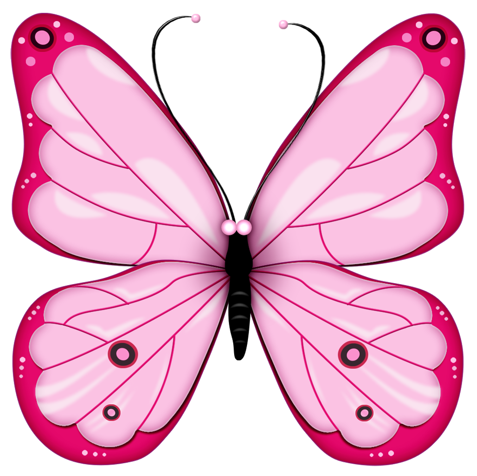 Butterfly clip art. Pink transparent clipart gallery