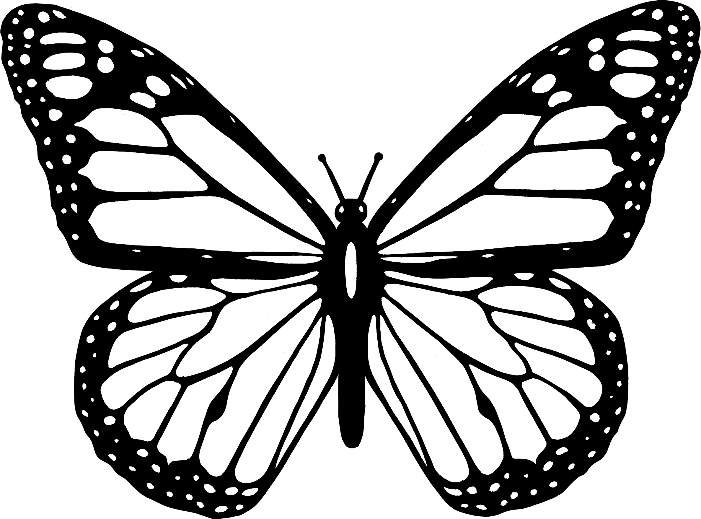 Photo clipart butterfly. Black and white big