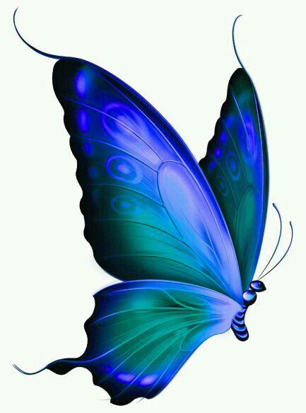Butterfly clip art blue butterfly. These were liz s