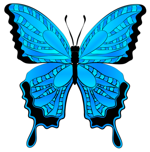 Butterfly clip art blue butterfly. Download clipart png photo