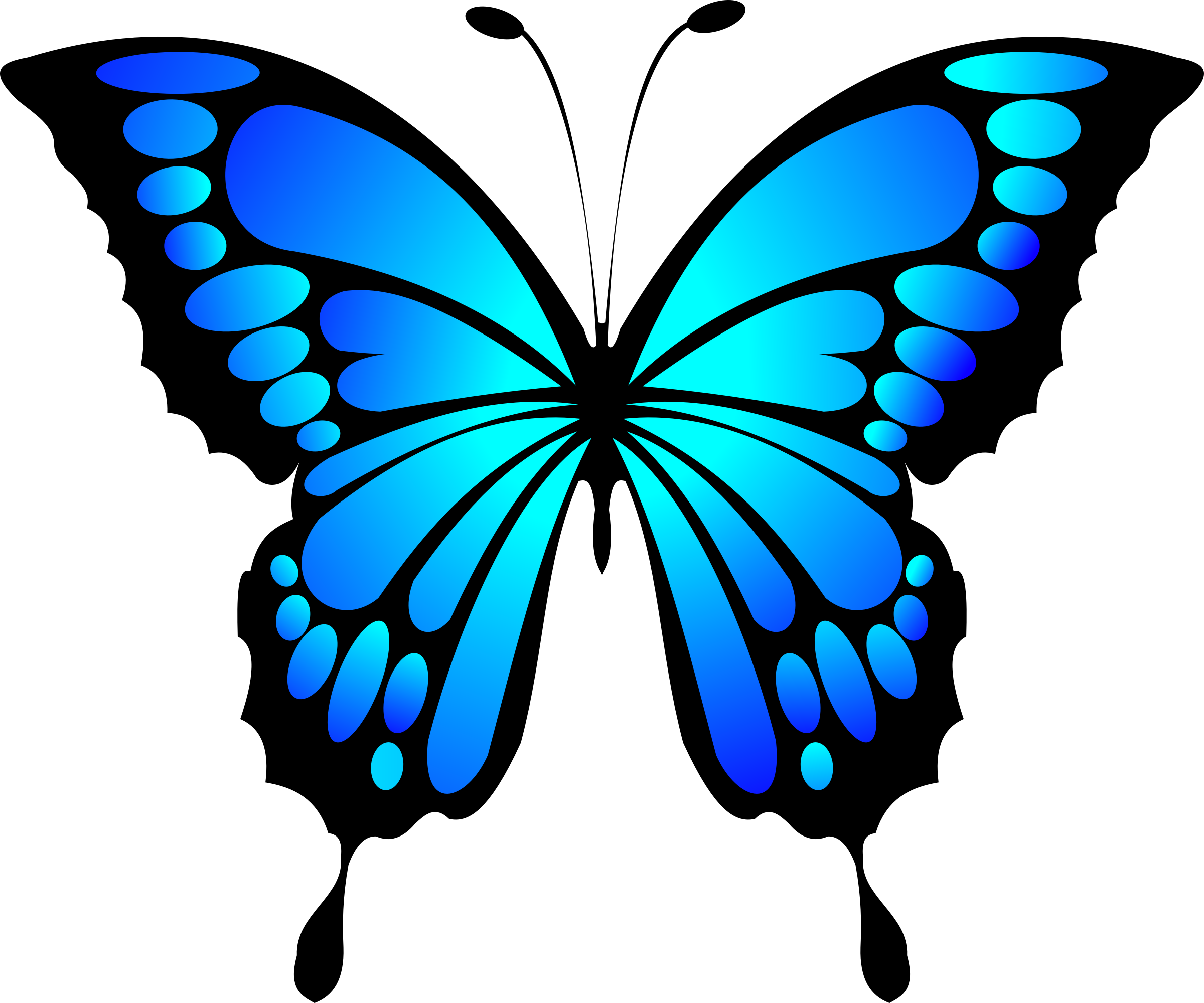 Butterfly clip art blue butterfly. Clipart big image png
