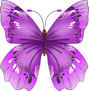Butterfly clip art colourful. At clker com vector