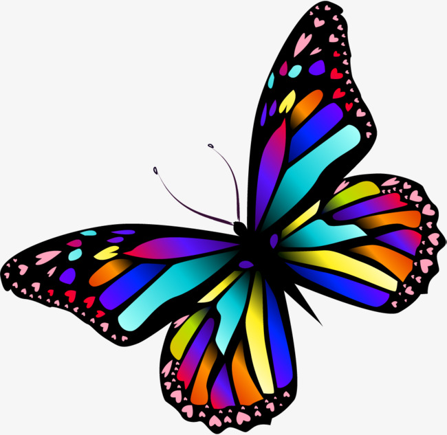 Dream colorful png image. Butterfly clip art colourful black and white stock