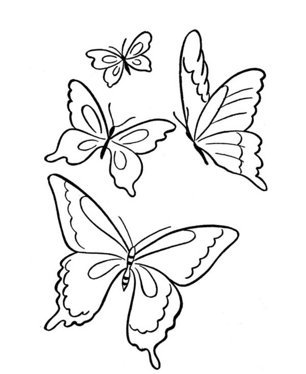 Butterfly clip art easy. Line drawing of at