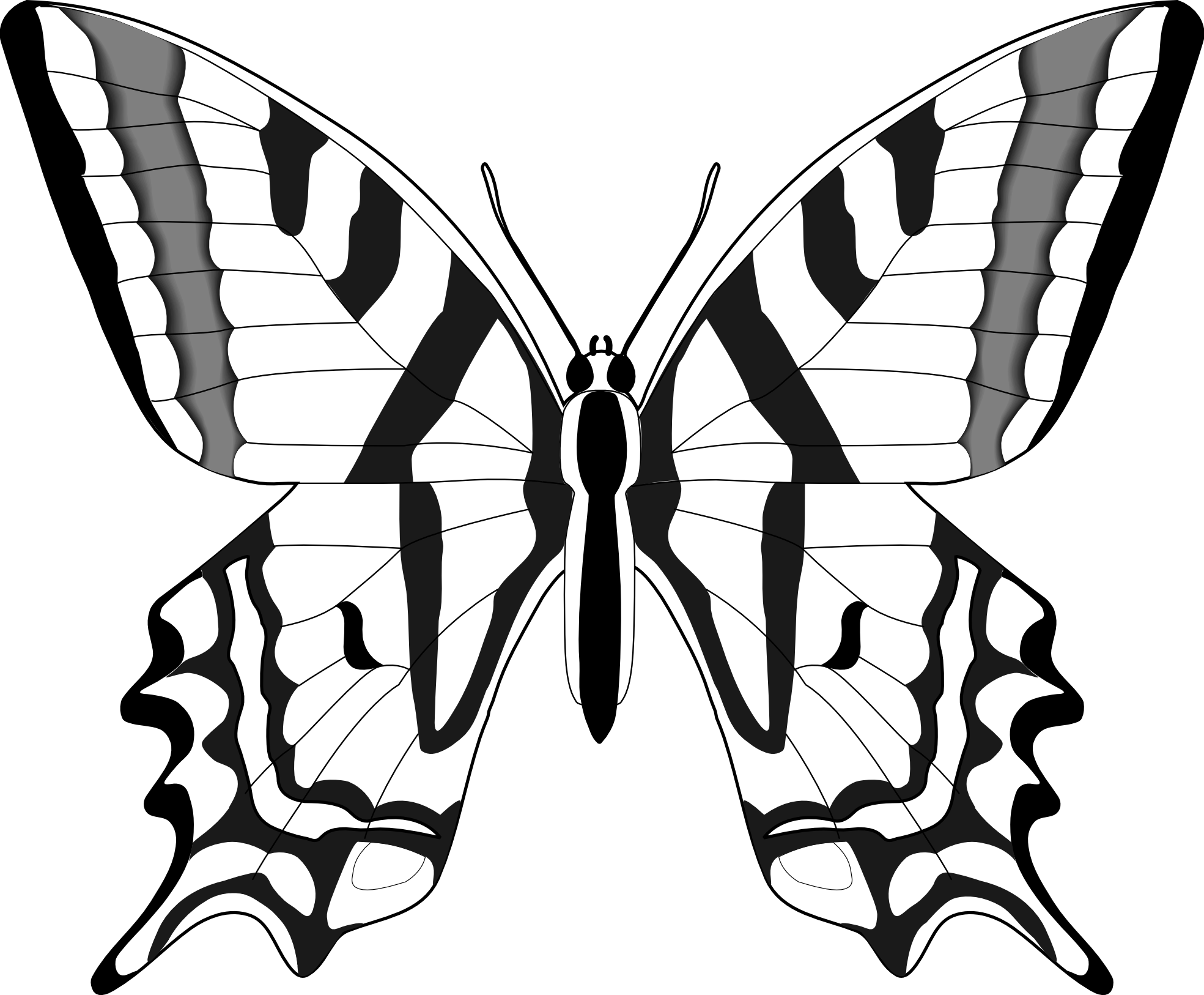 Butterfly clip art line drawing. Simple black and white