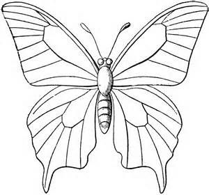 Butterfly clip art line drawing. Best images on