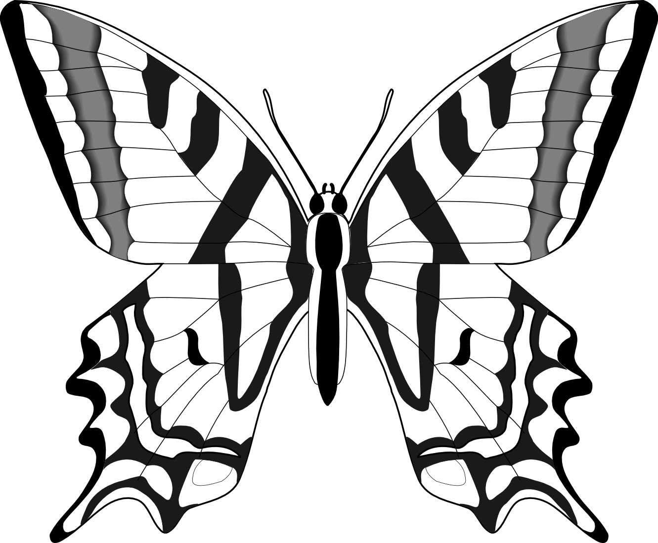 Butterfly clip art line drawing. Clipart best butterflies pinterest