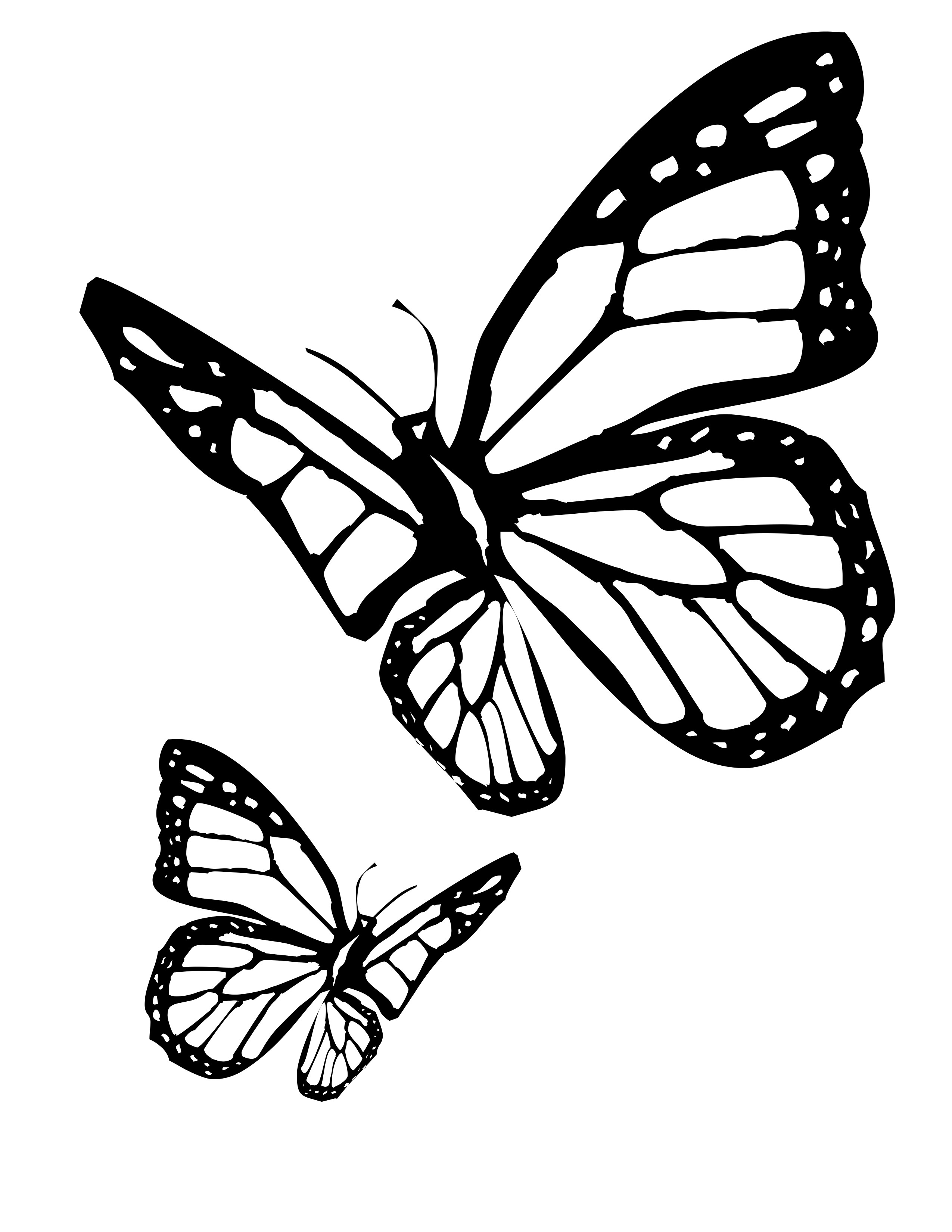 Butterfly clip art realistic. Butterflies flying drawing at
