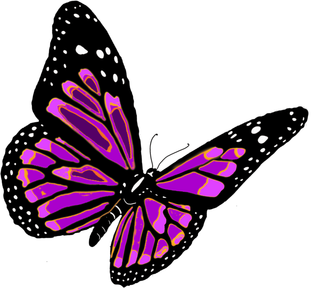 Butterflies flying png. Butterfly image free picture