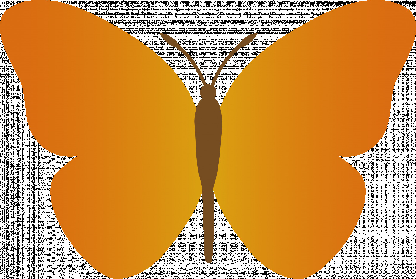 Butterfly clip art simple. Images of orange free
