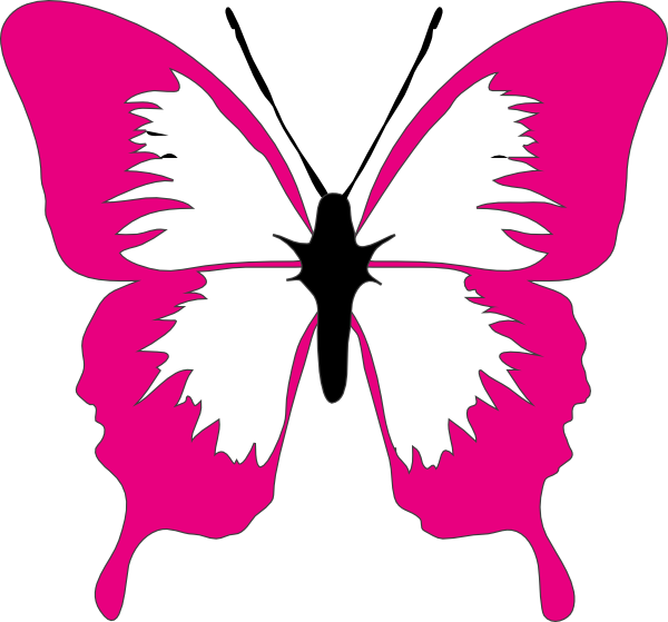 Butterfly clip art small butterfly. At clker com vector