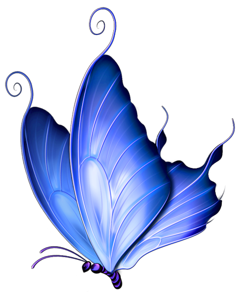 Butterfly clip art transparent background. Blue deco png clipart