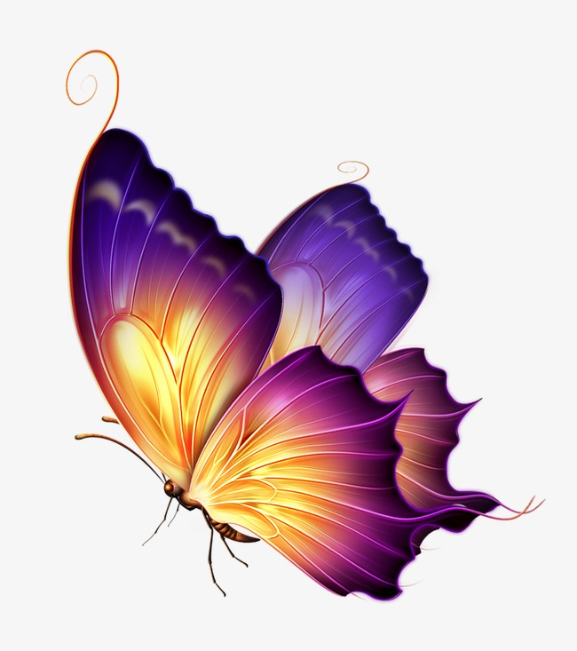 Png images download resources. Butterfly clip art transparent background graphic library