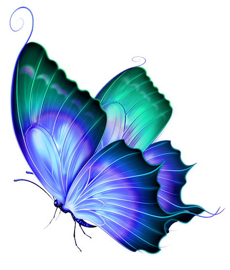 Butterfly clip art transparent background. Blue and green deco