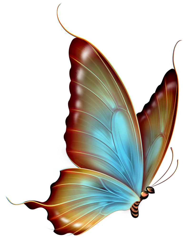 Butterfly clip art transparent background. Brown and blue clipart