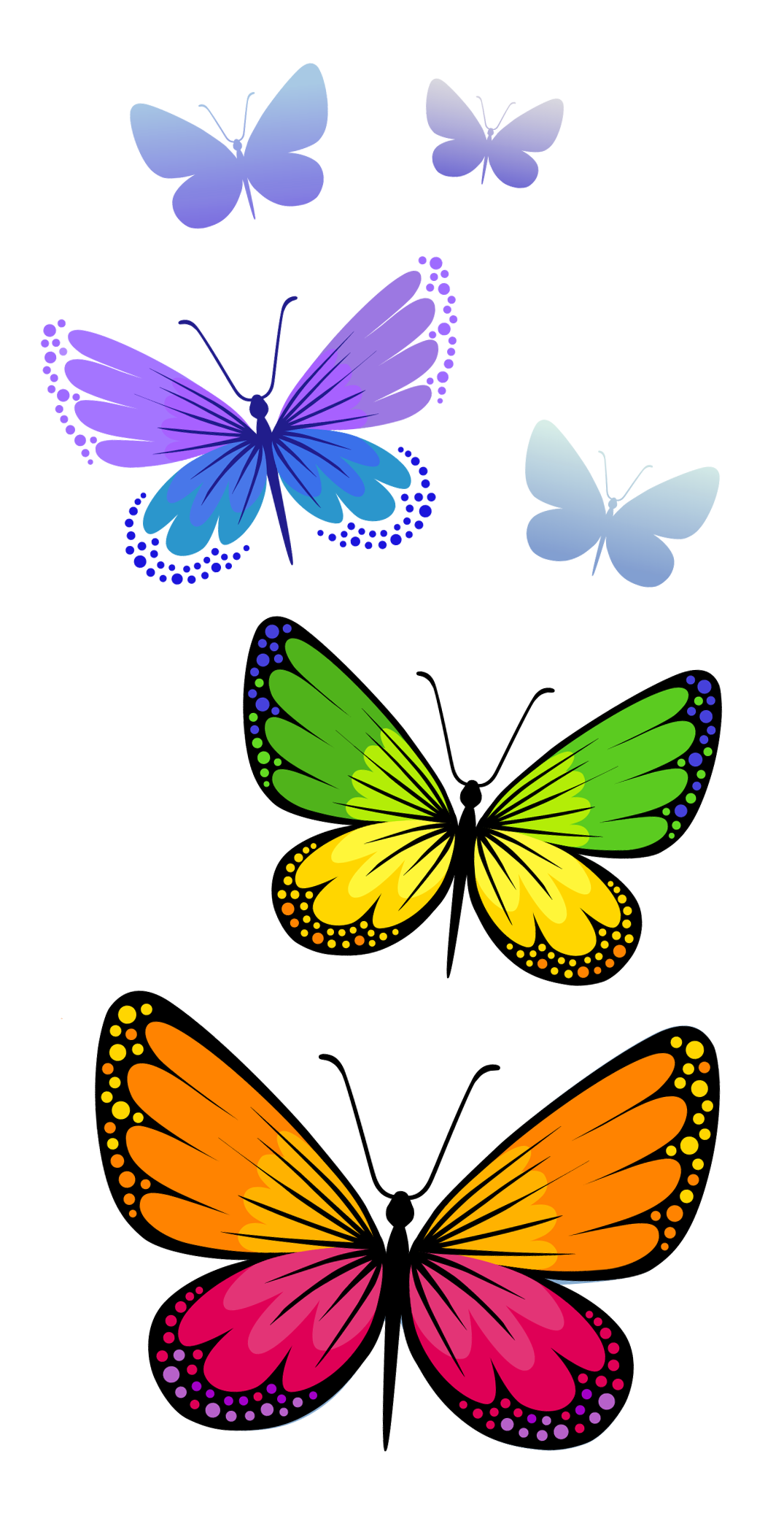 Butterfly clipart growth. Butterflies composition png image