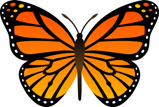 Butterfly clipart. Monarch orange vector free