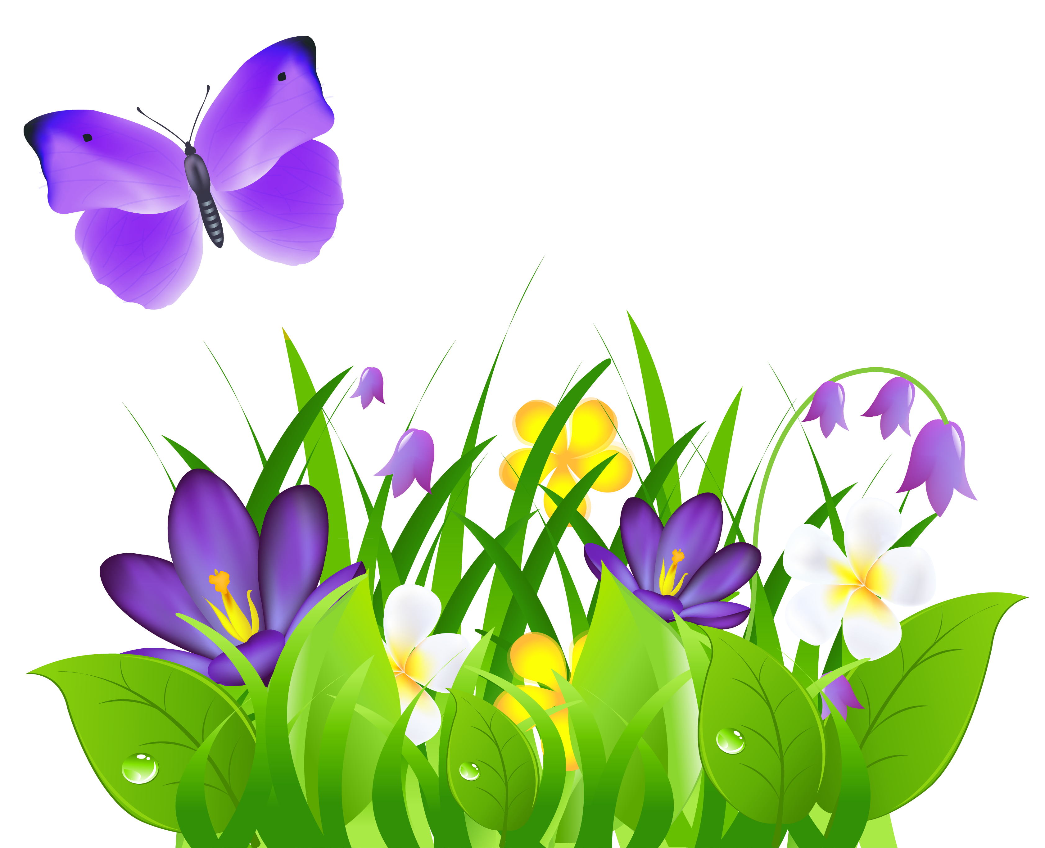 Butterfly on flower png. Purple flowers grass and