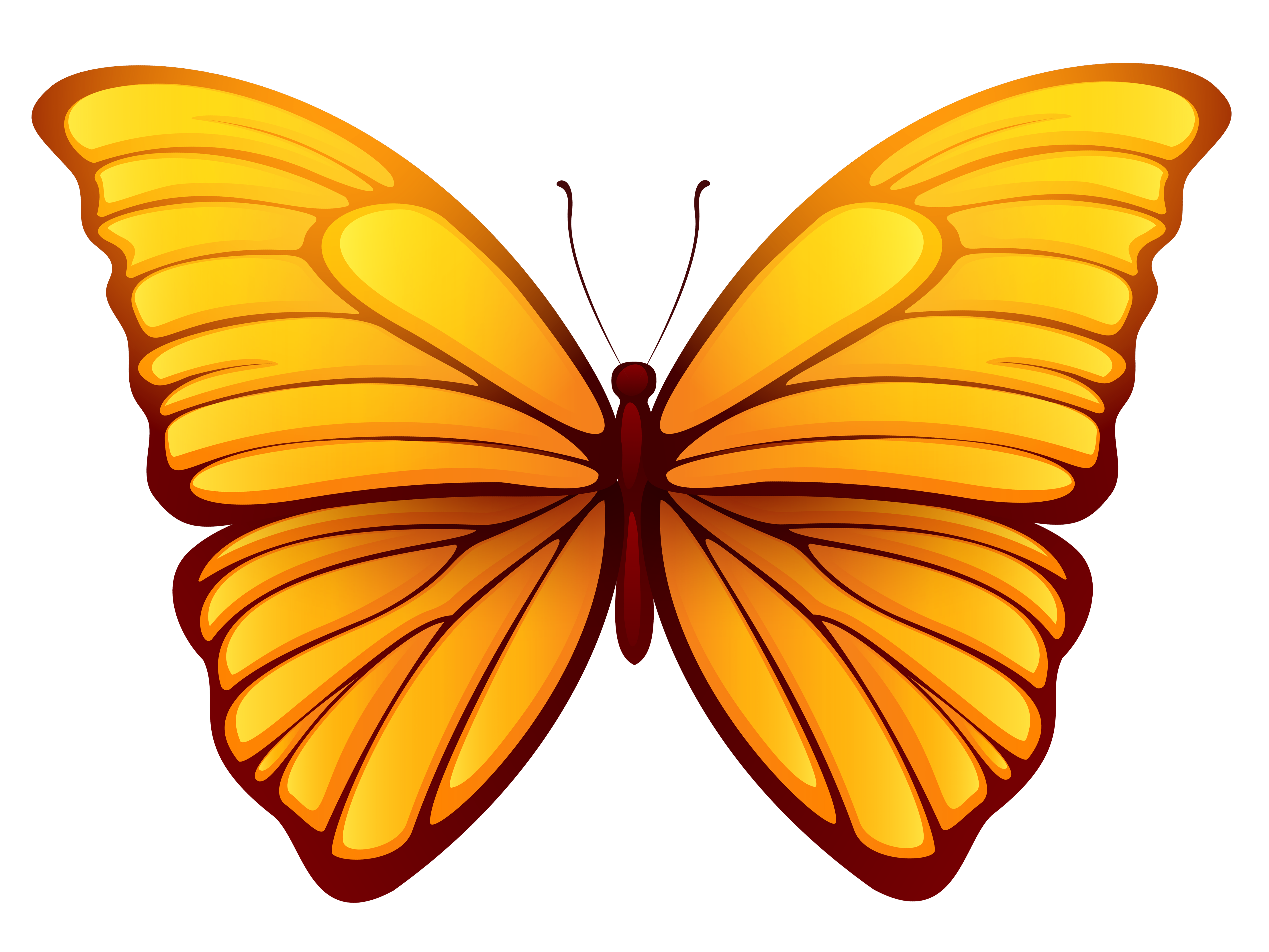 Butterfly png images. Picture gallery yopriceville high