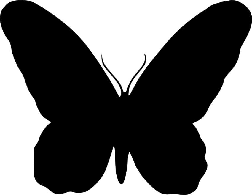 Butterfly silhouette png. Free images toppng transparent