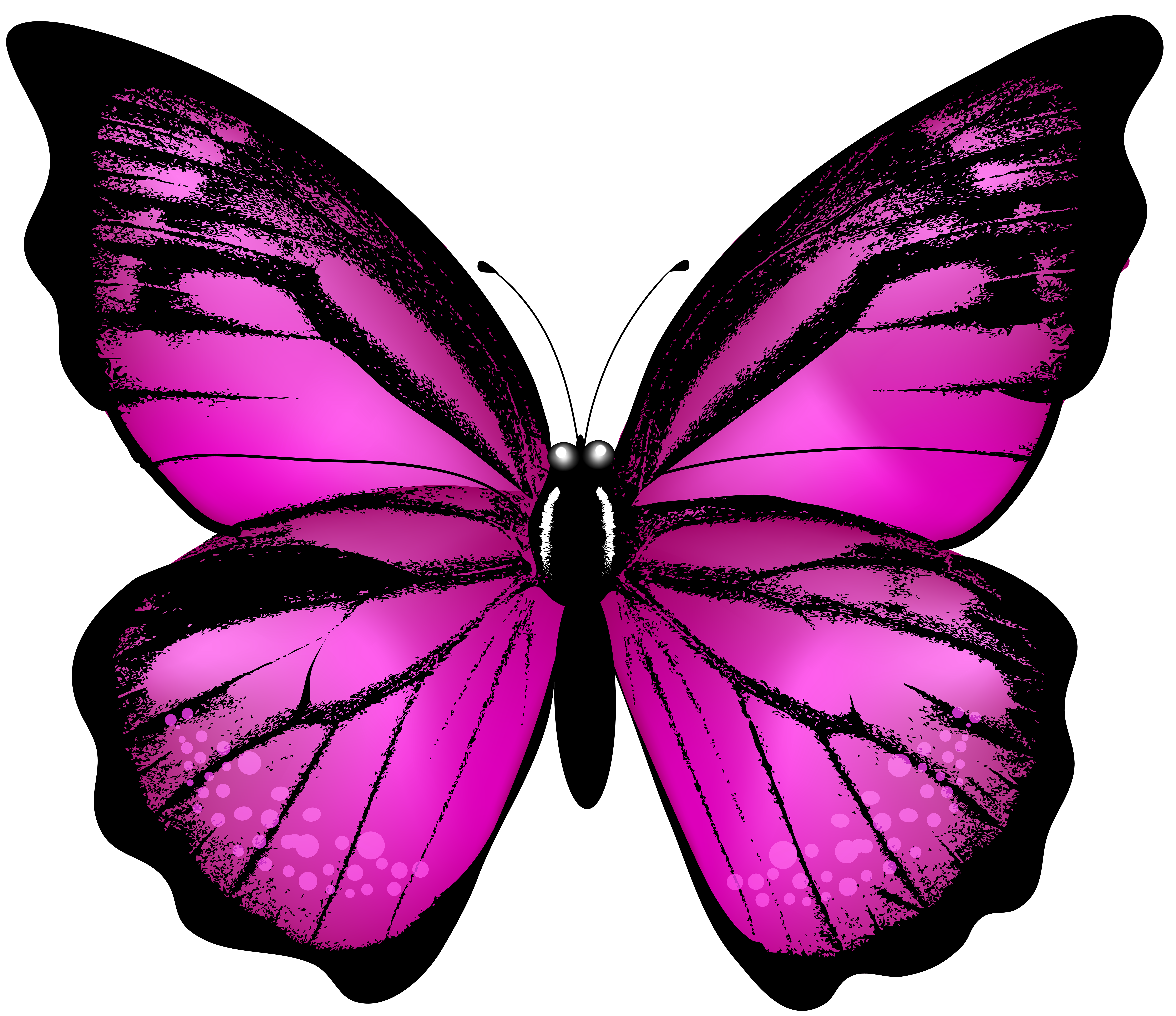 Butterfly wings png. Pink transparent clip art