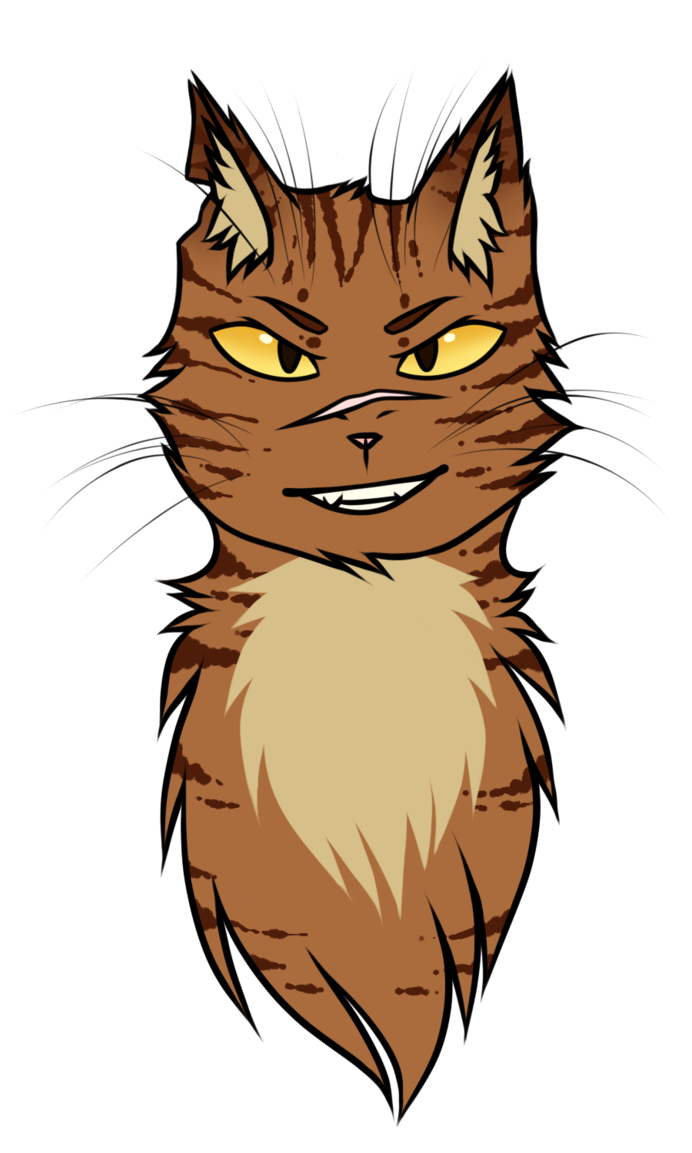 Butthole drawing beginner. Tigerstar by adventageouslizards on