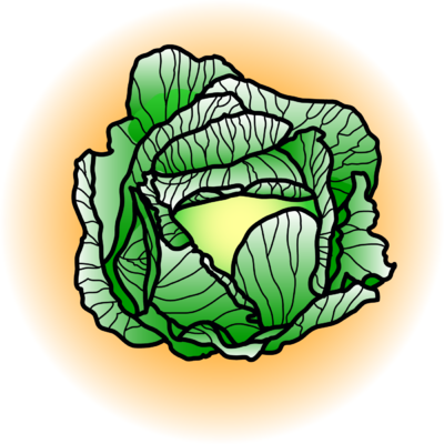 Cabbage clipart illustration. Free cliparts download clip