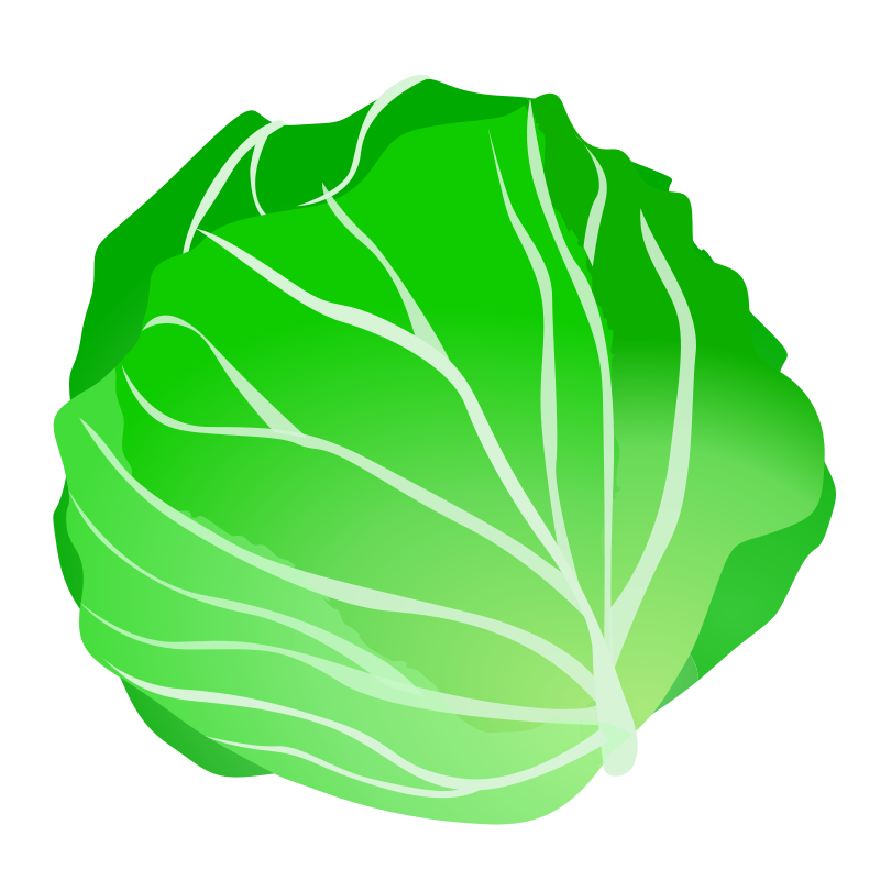cabbage clipart salad leave