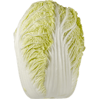 Cabbage plan view png. Broccoli cabbages cauliflower superstore