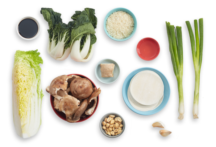 Recipe mushroom dumplings with. Cabbage plan view png vector royalty free download