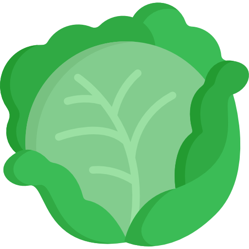 Cabbage plan view png. Free food icons icon