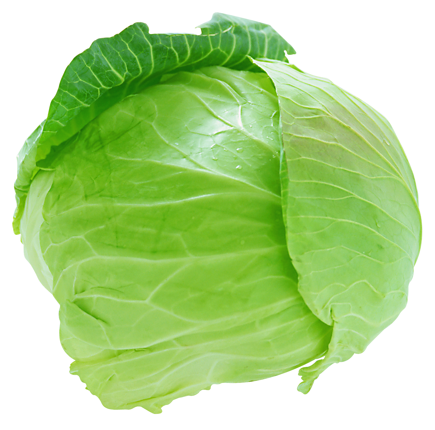 Green vegetables png. Fresh cabbage picture gallery